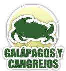 Taxidermia de Tortugas (Galápagos) y cangrejos