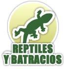 Taxidermia reptiles y batracios